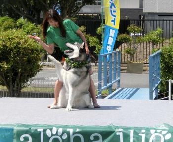 kakegawa140511+074_.jpg